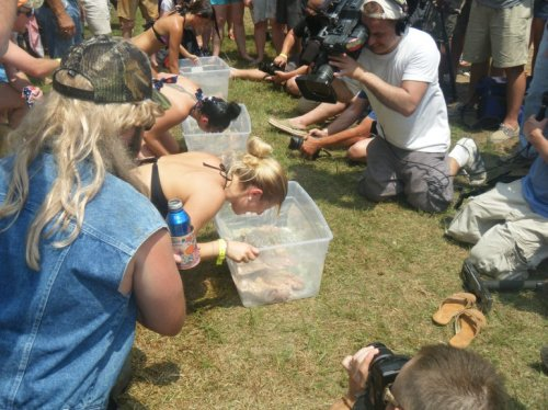 Media attention, Redneck Games 2012